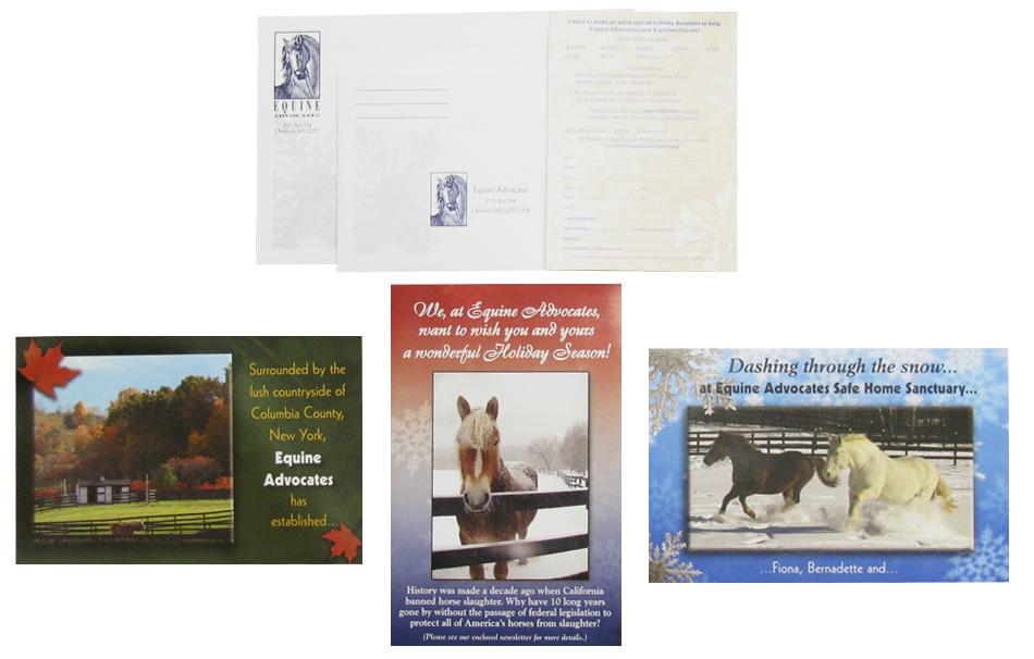 Equine Advocates Mailers